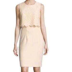 NWT size 2 Ava Aiden Lace Sheath Overlay Dress